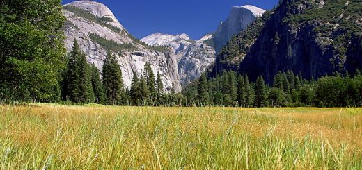 640px-Yosemite_meadows_2004-09-04.jpg