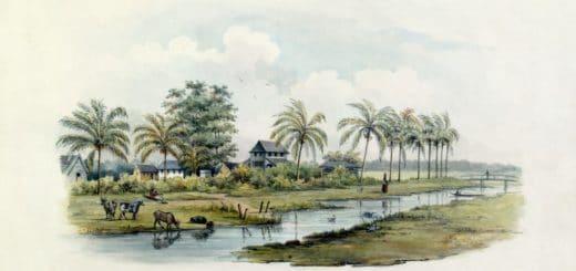 lossy-page1-1024px-Tropenmuseum_Royal_Tropical_Institute_Objectnumber_1138-7_Riviergezicht_met_gebouwen_van_een_kato2.tif.jpg