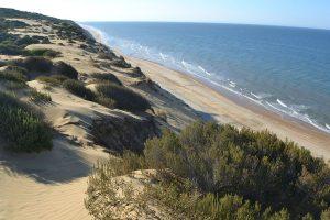 Parc national de Doñana près de Séville