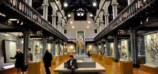 1024px-Main_Hall2C_the_Hunterian_Museum2C_Glasgow..jpg