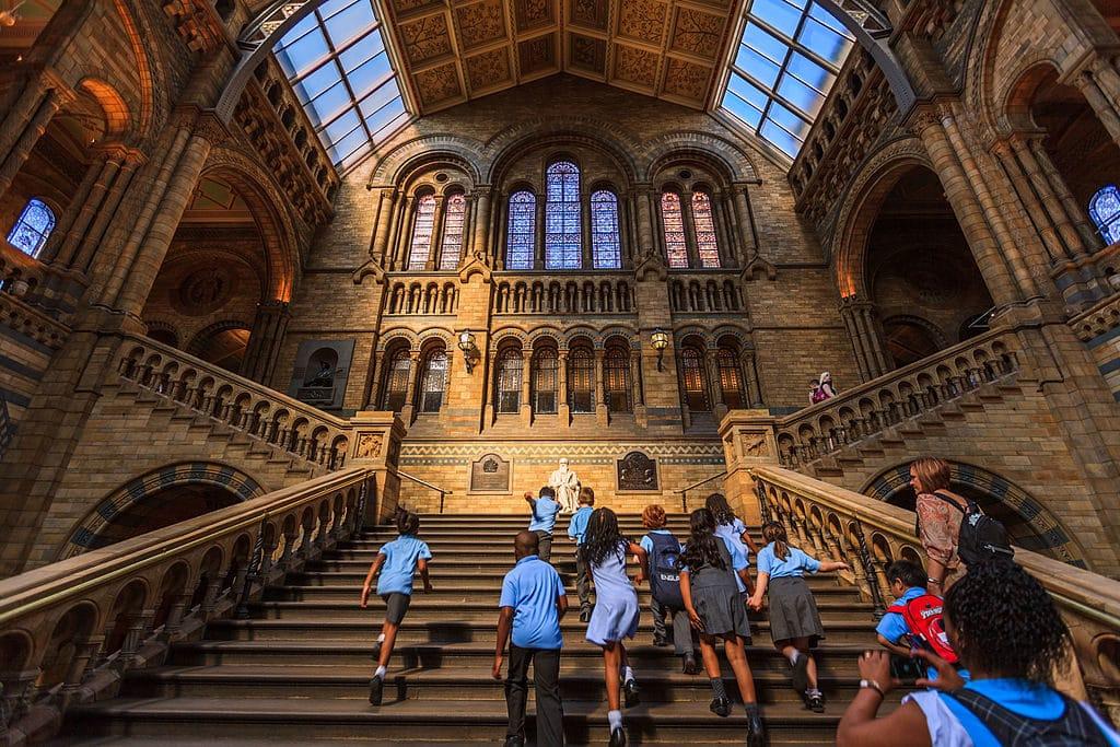 Dans le Musée d'Histoires Naturelles de Londres.