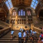 Musée d'Histoire Naturelle de Londres :  Géantissime [Kensington]