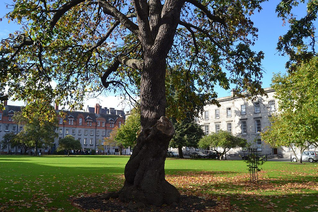 New Square dans le Trinity College de Dublin - Photo de Matthias v.d. Elbe