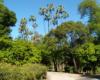 1024px-Parque_de_MarC3ADa_Luisa_Sevilla.jpg