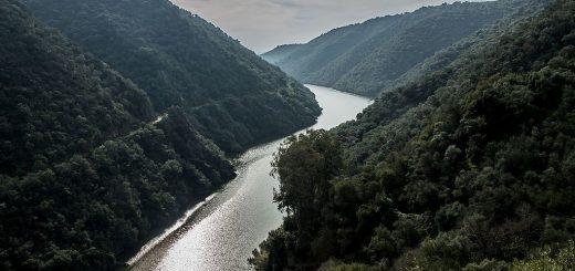 1024px-Sendero_de_Nuestra_Señora_de_los_Ángeles2C_Parque_natural_Sierra_de_Hornachuelos.jpg
