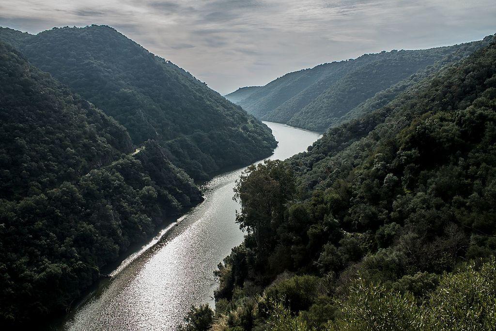 Parc de Sierra de Hornachuelos en Andalousie (Espagne)