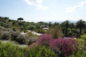 Jardin botanique de Barcelone : Jardin méditerranéen fractal [Montjuic]
