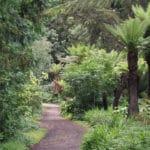 Golden Gate park à San Francisco : Musées et jardins incontournables