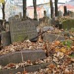 «Nouveau» cimetière juif de Cracovie, émotions sous les arbres [Kazimierz]
