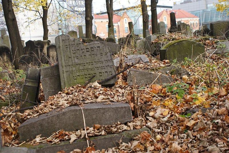 Nouveau cimetière juif de Cracovie, sous les arbres [Kazimierz]