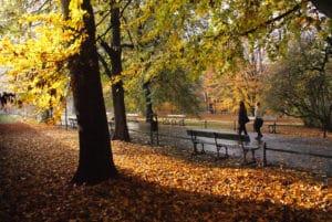 Agréable parc des Planty autour du Vieux Cracovie [Vieille ville]