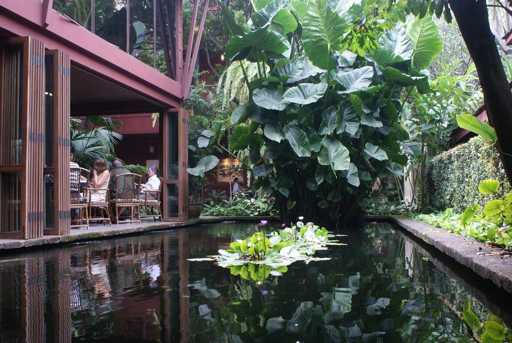 Météo Bangkok : Prévision à 15 jours, climat & quand venir ?