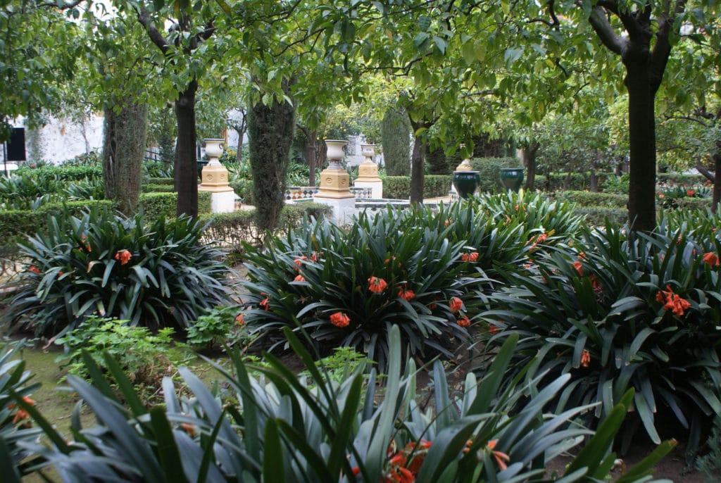 Dans un jardin du Palais de Las Duenas à Séville.
