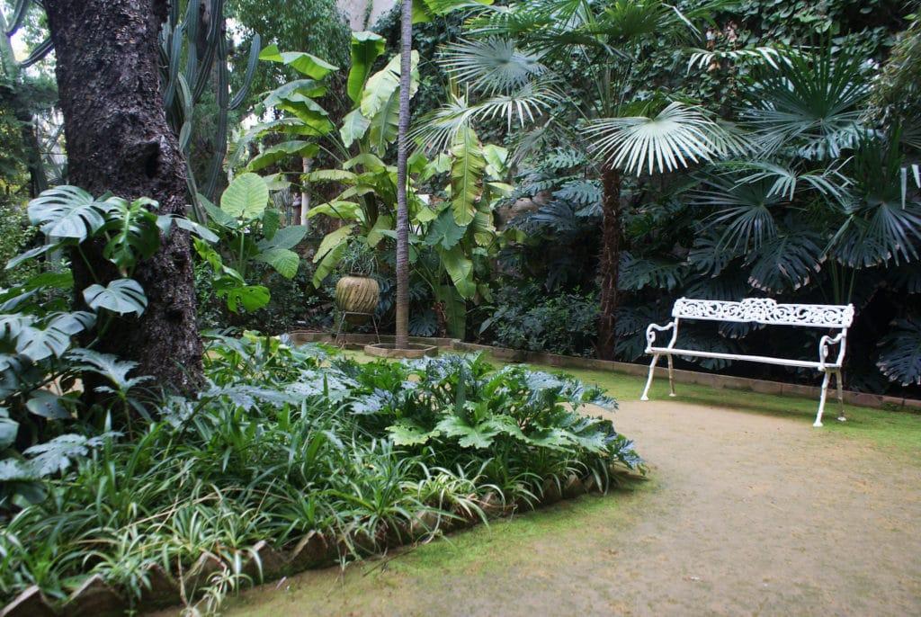 Jardin verdoyant dans le Palais de las Dueñas à Séville.