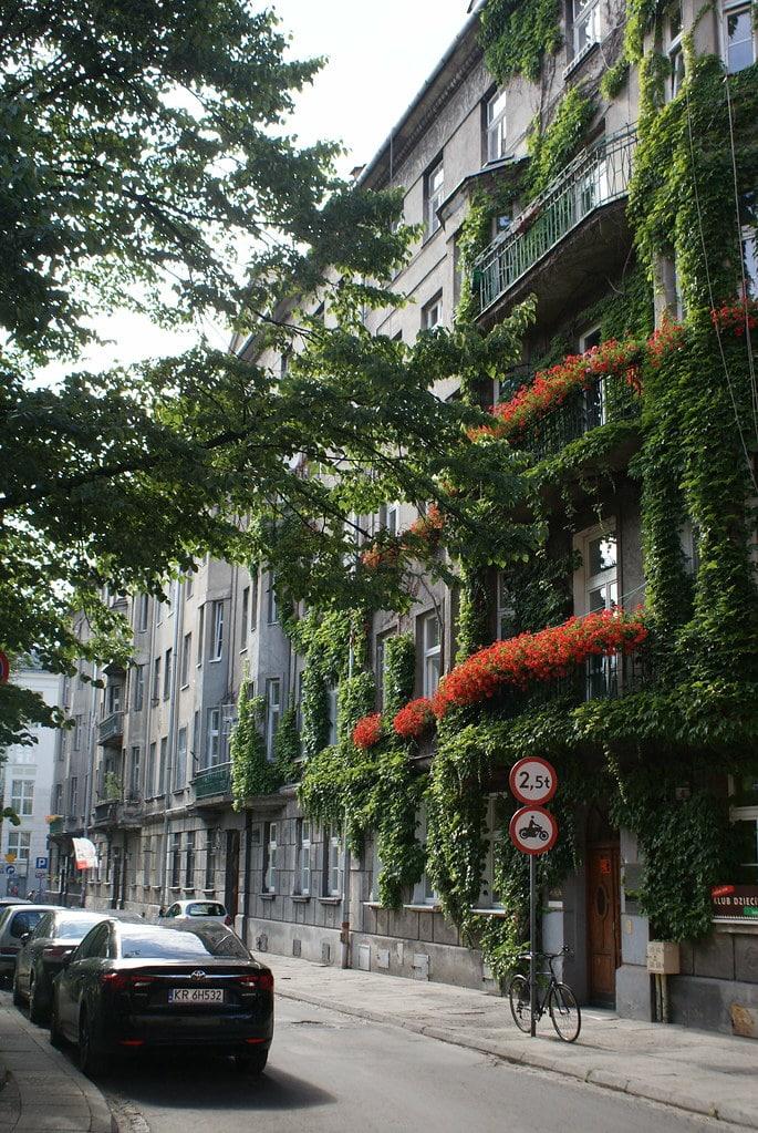 > Beaucoup de géraniums pour une façade géométrique de le quartier de Piasek à Cracovie.