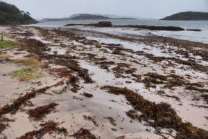Oban, port et porte vers les Hébrides extérieures & Ile de Mull