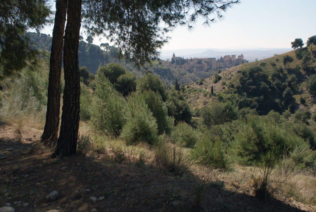Vue sur l'Alhambra à Grenade depuis les collines environnantes.