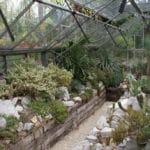 Jardin botanique Zuidas à Amsterdam : Joli et gratuit [Sud]