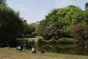 Saphartipark à Amsterdam : Chouette coin à pique nique [Pijp]
