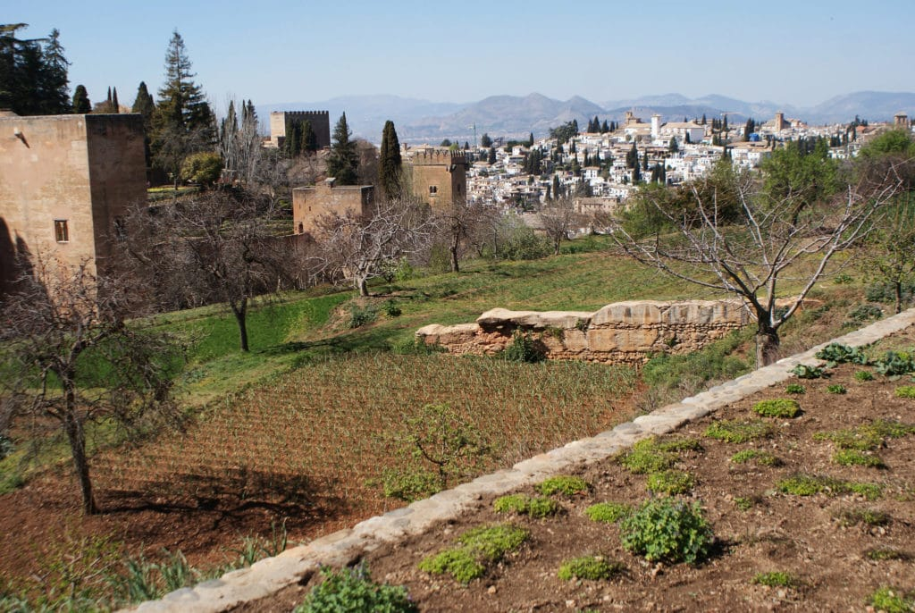 Jardins de la Generalife dans l'Alhambra à Grenade.