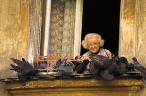 Bêtes de Cracovie : Corbeaux, pigeons et belettes