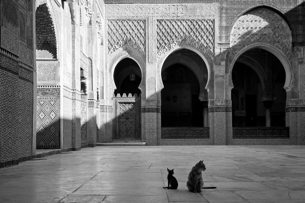Visiter Fès (tourisme au Maroc) : Quoi faire en 2, 3 jours ? [2018]