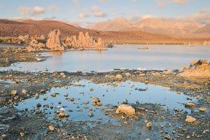 Mono Lake, le lac salé : Paradis des oiseaux migrateurs