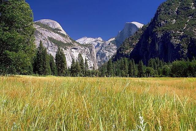 Yosemite National park : La Sierra Nevada dans toute sa splendeur