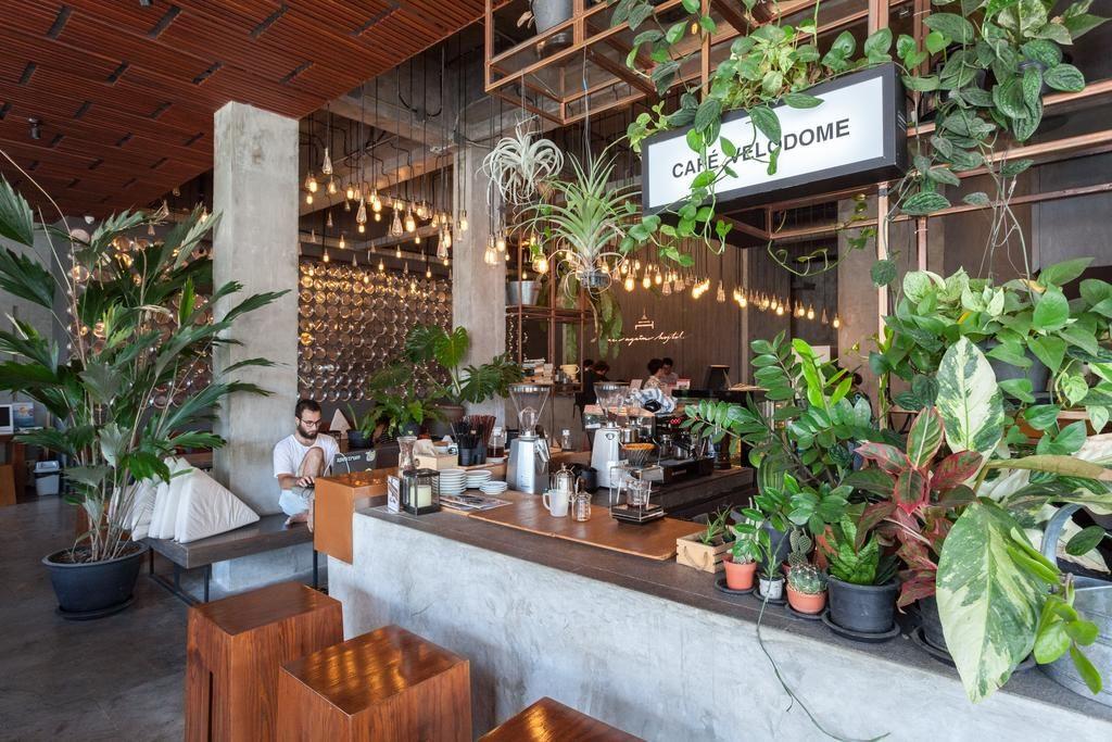 Café de l'Auberge de jeunesse Once Again Hostel à Bangkok : Moderne, fonctionnel et avec des plantes c'est toujours mieux.