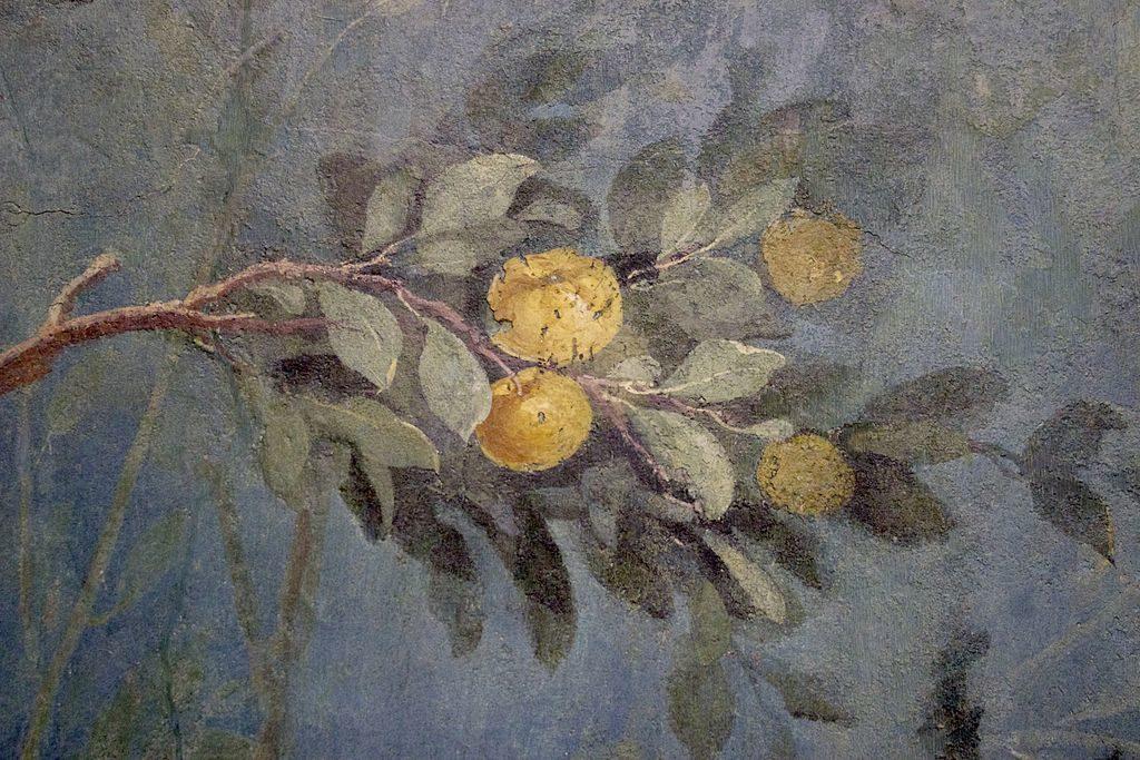 Antiquité : Fresque botanique de la Villa de Livia au Palazzo Massimo alle Terme à Rome.