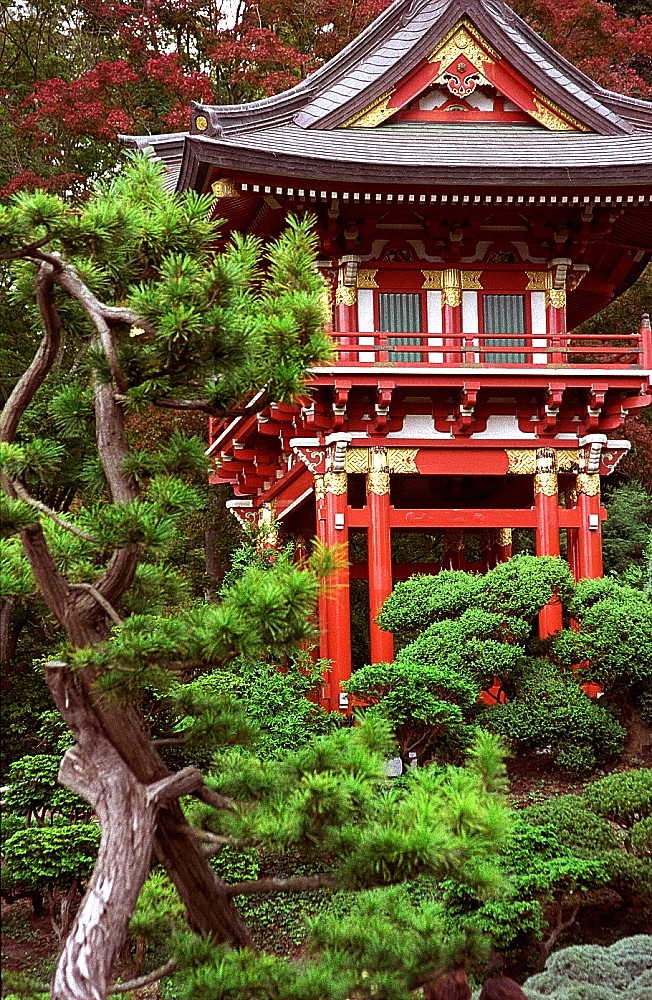 Temple du Japanese Tea Garden au Golden Gate Park de San Francisco - Photo de David Ohmer