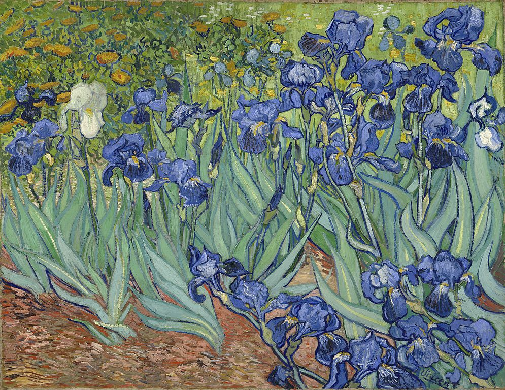 "Toile de Vincent van Gogh ""Les iris"" (1889) au Getty Center, musée d'art de Los Angeles."