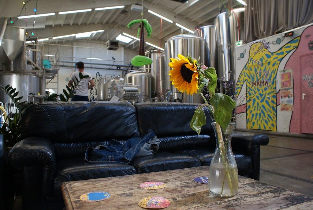 Cuve et tournesol, gros canapé et table basse à la microbrasserie Oedipus à Amsterdam.