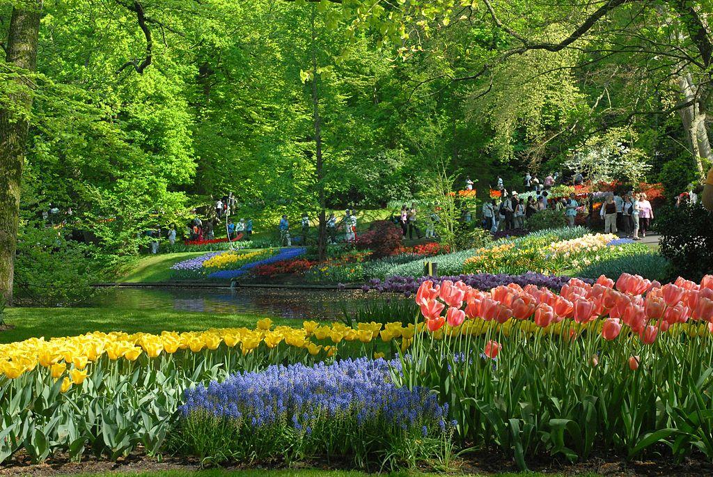 Jardin de Keukenhof près d'Amsterdam - Photo de Cszmurlo