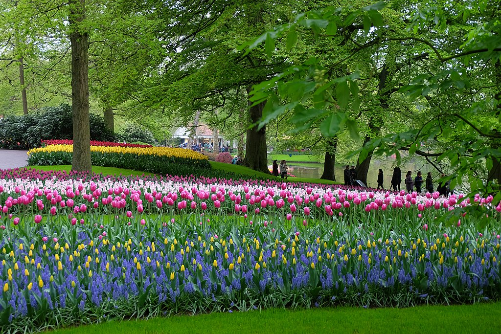 Parc de Keukenhof près d'Amsterdam aux Pays-Bas au printemps - Photo de Julien Chatelain