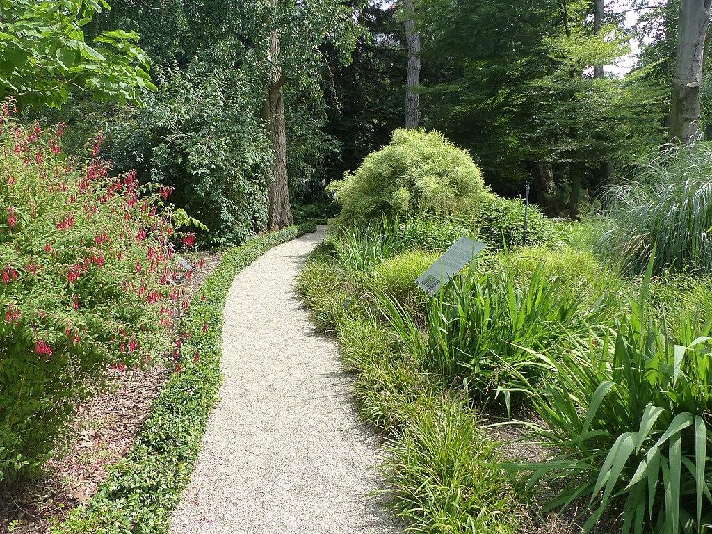 Sentier du jardin botanique Hortus Botanicus dans le quartier de Plantage à Amsterdam - Photo de Elekes Andor