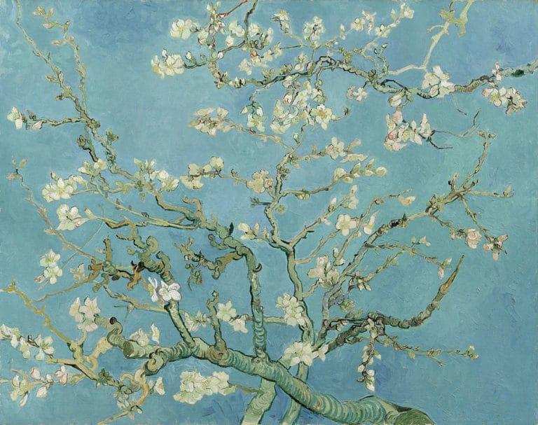 """""""Amandiers en fleurs"""" par van Gogh au Musée van Gogh dans le quartier des Musées d'Amsterdam."""