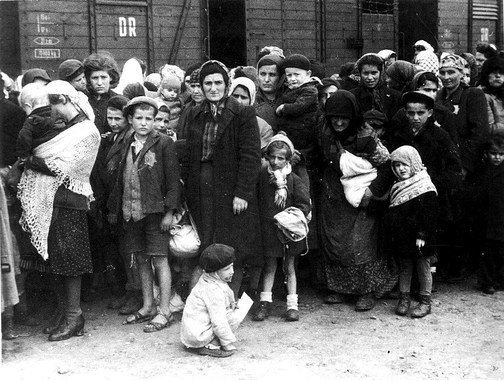 Arrivée de Juifs hongrois à Auschwitz Birkenau : Tous les enfants sur la photo ont été gazés.