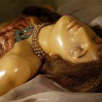 Musée Poggi à Bologne : Le musée scientifique à ne pas rater !