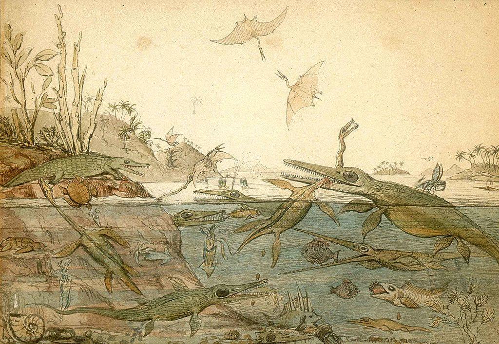 """""""Duria_Antiquior"""" (1840) au National Museum Cardiff - illustration d'Henry de la Beche"""
