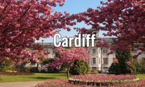 Visiter Cardiff : Quoi faire ? Chateau, carte détaillée et activités sympas