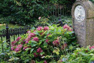 Romantique cimetière Assistens Kierkegaard à Copenhague [Norrebro]