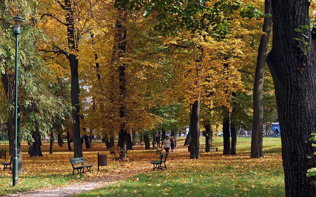 Dans le parc de Mogila à Nowa Huta, Cracovie. Photo de Zygmunt Put