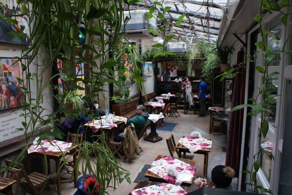 Restaurant végétarien : Sus la verrière du Chimera Salad Bar à Cracovie.