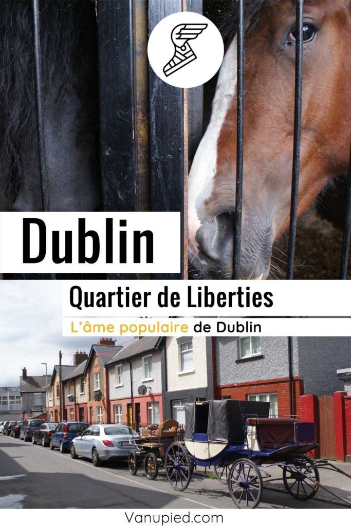 Quartier populaire de Liberties à Dublin