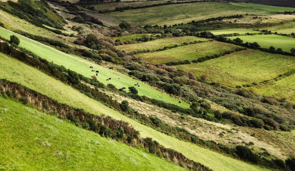 Partir à la découverte de l'Irlande en bus - Photo de Martie Swart