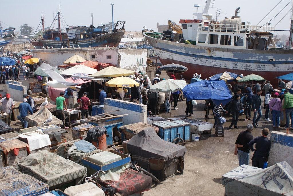 > Le marché aux poissons sur le port d'Essaouira.