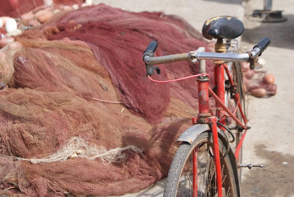 > Si vous voulez sortir de la Médina, un vélo peut être pratique sinon vous ferez tout à pied sans problème.