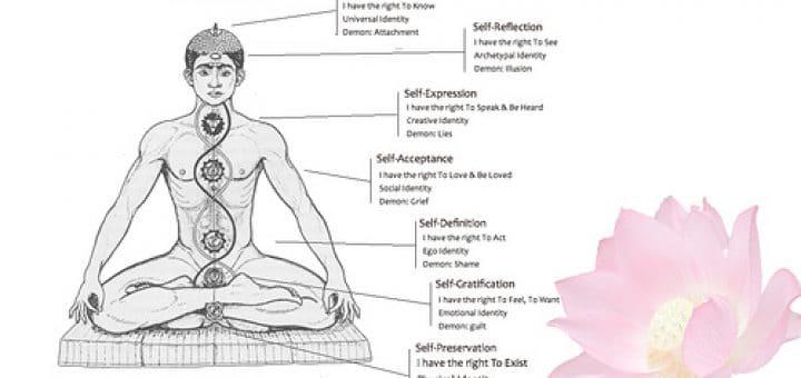 Illustration des chakras - Image de Nessman