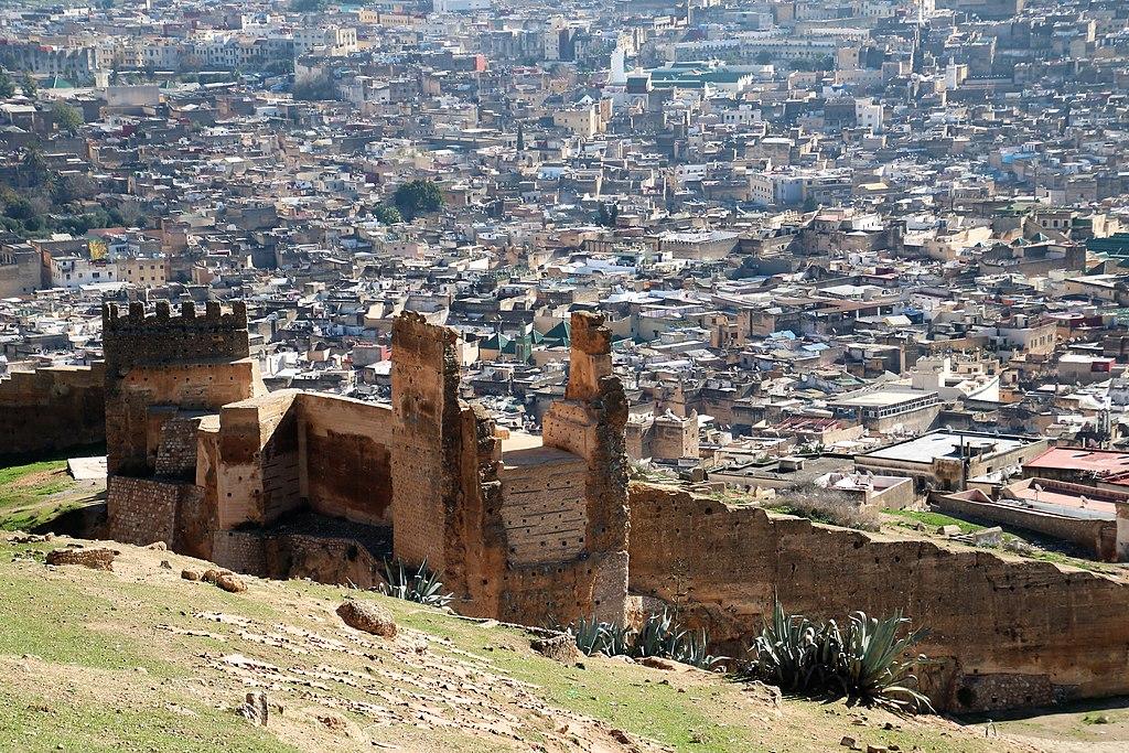 Vue sur la Médina de Fès depuis les tombeaux mérinides - Photo de Werner100359